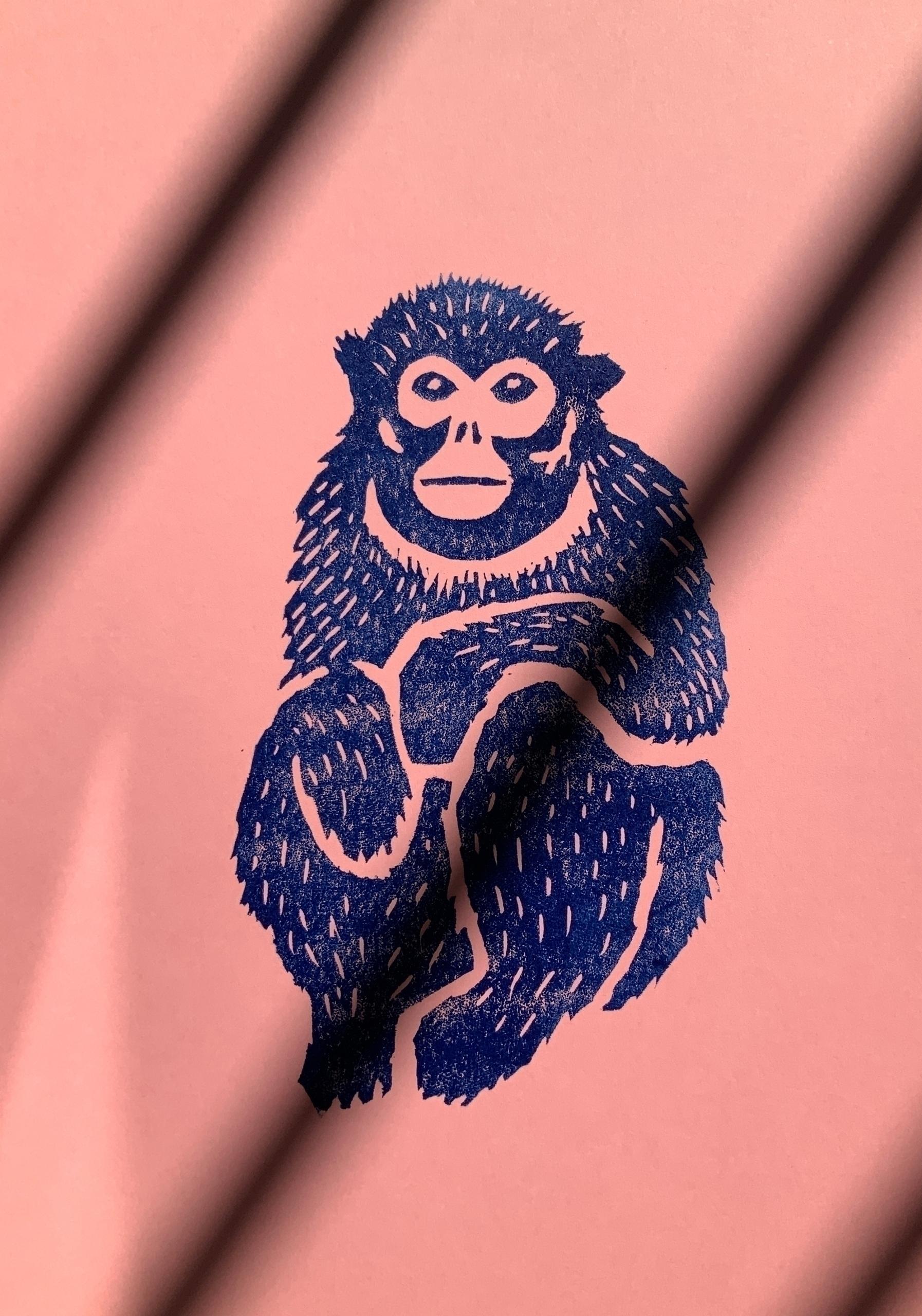 Golden snub-nosed monkey Rhinop - marcribera   ello