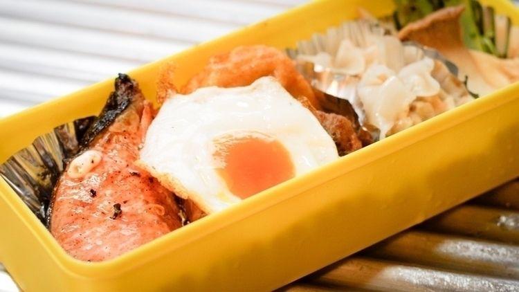 毎日朝5時に起きて自分のお弁当作り♪ 今朝は冷凍した生卵を輪切 - shigegoto | ello