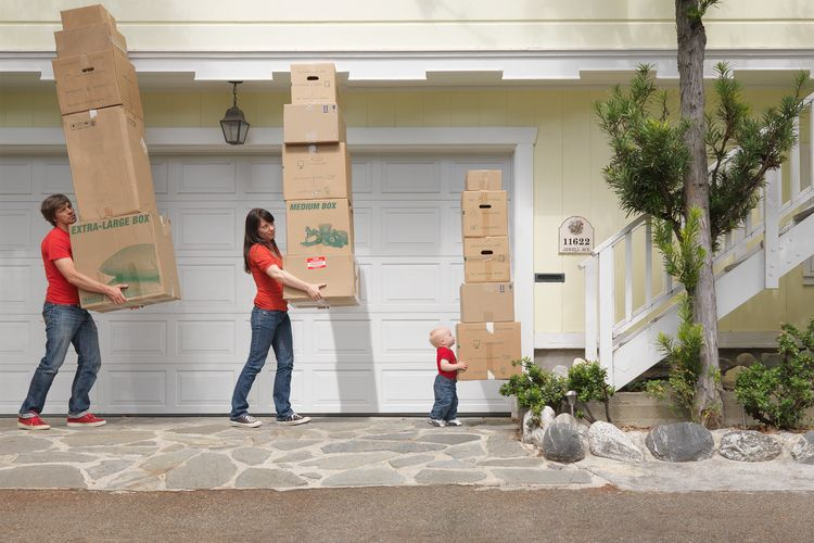Professional Moving service Pla - davidsmith121ster | ello