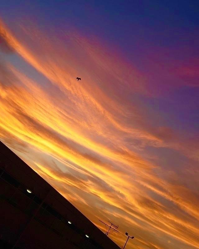 evening#sunset:sparkles::sunrise::heart:️ - mamimumemami | ello