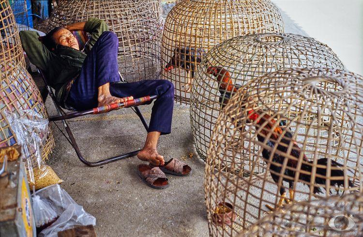 Happy work. Chatuchak, Bangkok - pentaxke | ello
