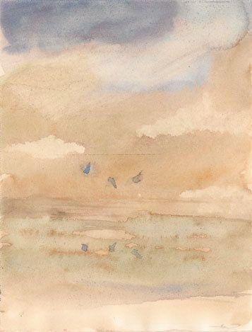Birds, 7 5 Waterolour Paper - watercolor - travisweaverart | ello