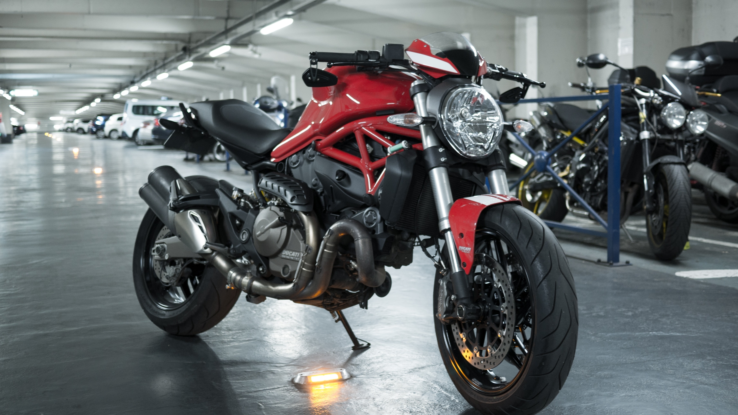 Ducati Cafe Racer - caferacerdesign | ello