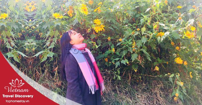 Miền Bắc nổi tiếng với mùa vàng - huutam2710 | ello