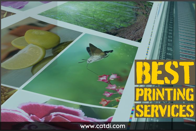 Houston Printing Services servi - catdi   ello