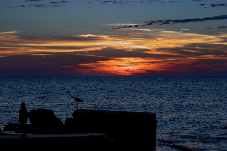 Sun Set San Petterburgs Florida - anibalv | ello