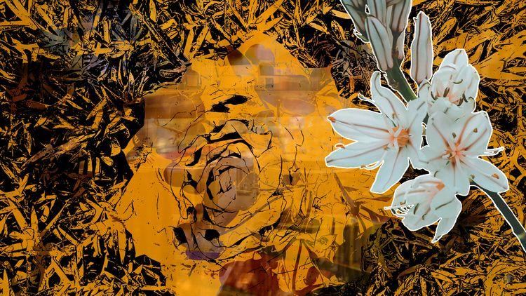 Touch Orange - ToughOfOrange, Flower - headplant   ello