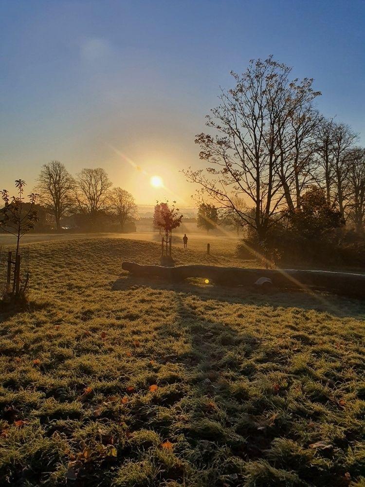 Morning sunrise - wickhamai   ello