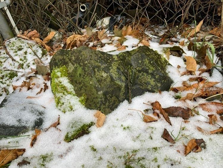 rock sleeping puppy - migizimig | ello