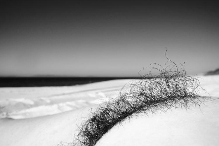 Curly sea - nude, sex, body, nsfw - arteria_visual | ello
