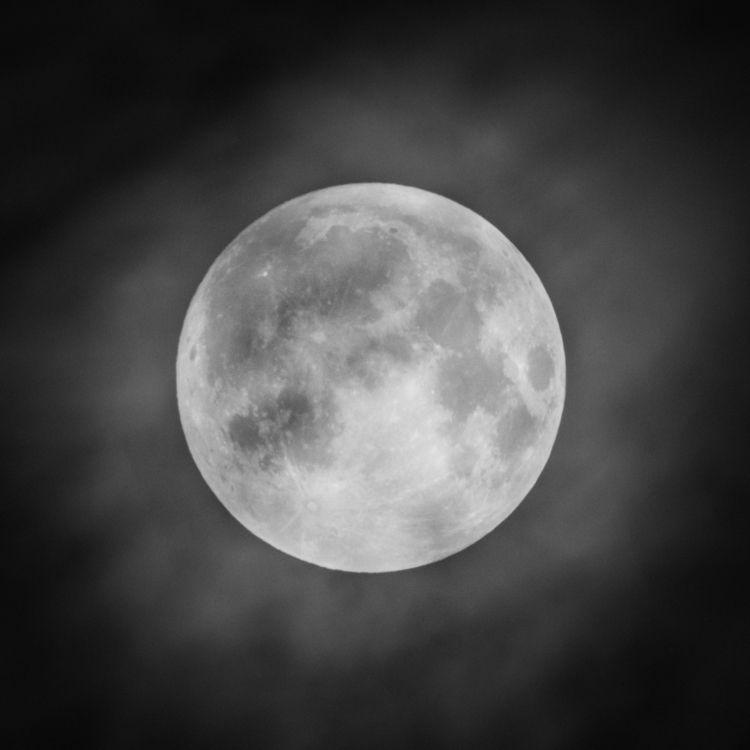 Lunar Obfuscation telescope-pho - jeffmoreau | ello