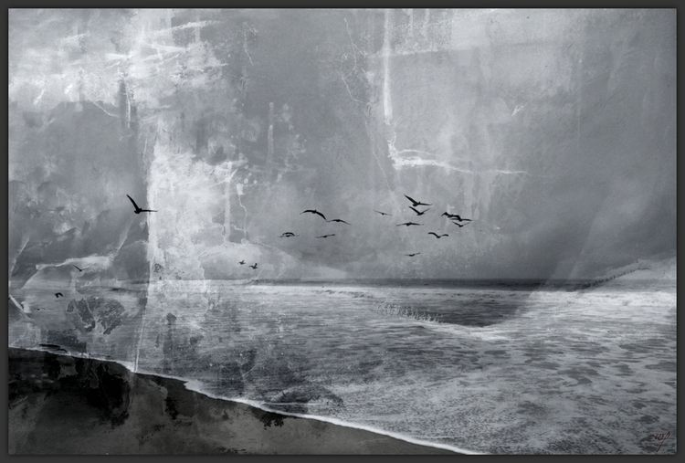 nature, fractured, 8, seascape  - voiceofsf | ello
