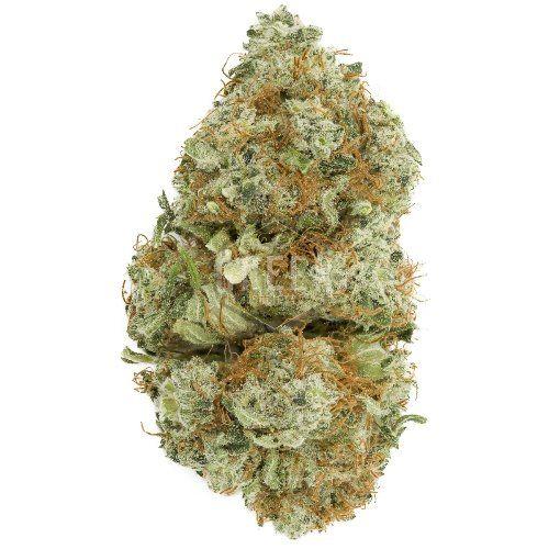vanilla kush strain weed link o - chrisjordan123 | ello