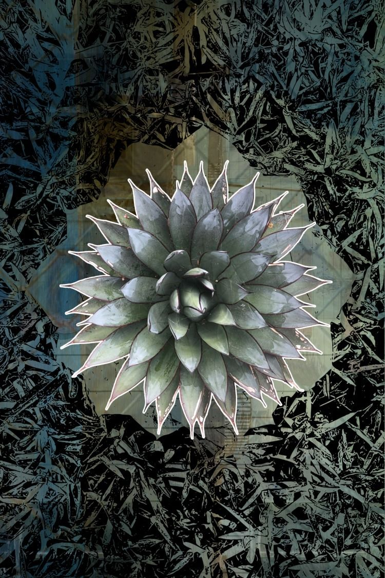 Nature Top - NatureOnTop, Black - headplant   ello
