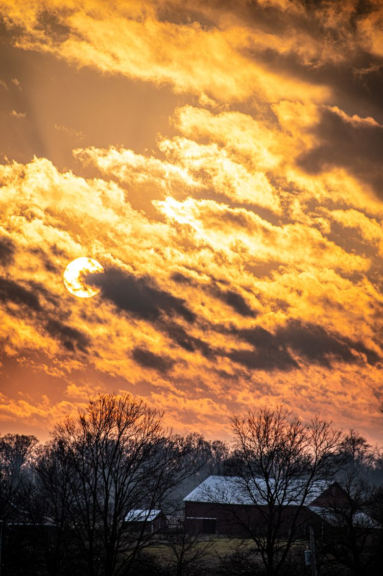 Winter sun, 12/21/20 - scalzi | ello