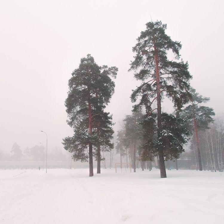 Foggy day | Instagram - landscape - andreigrigorev | ello