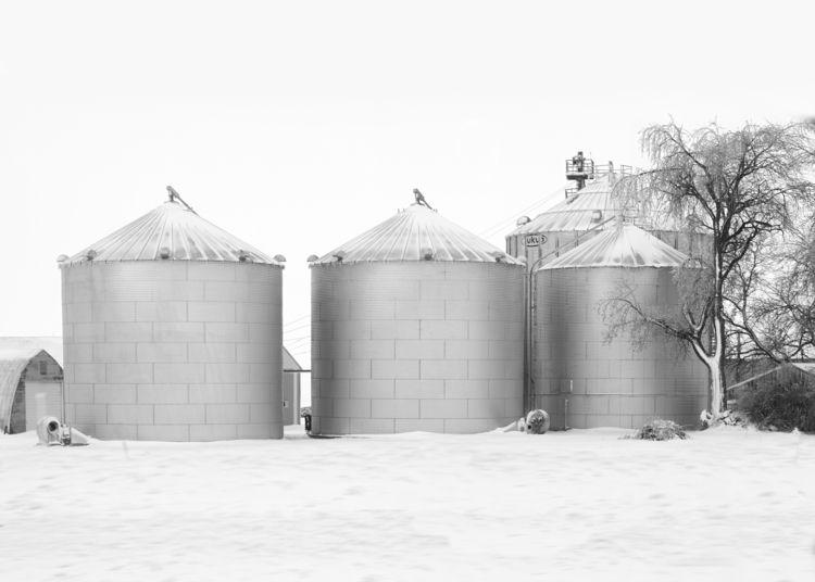 Grain silos Shot grain I88 Illi - junwin   ello