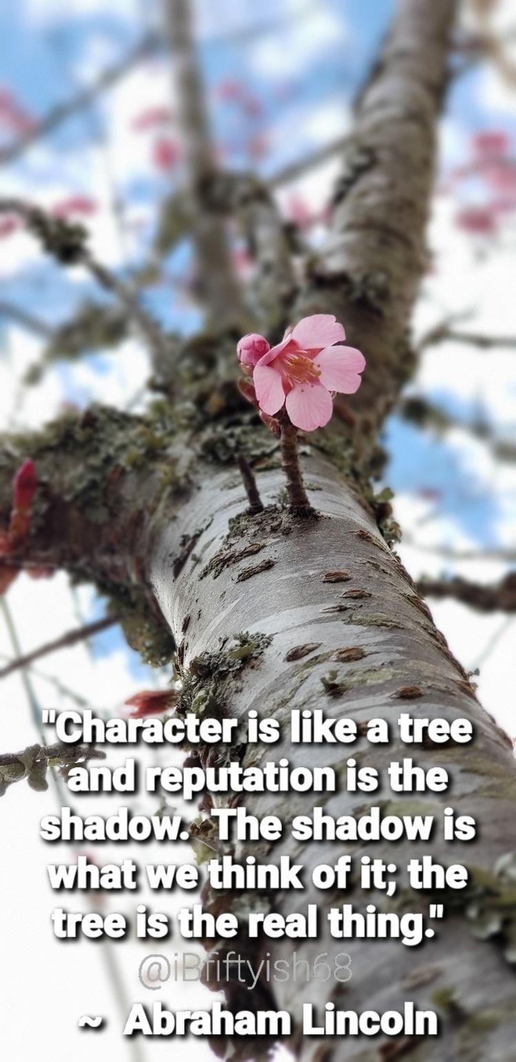 Character tree reputation shado - oldladywalking68 | ello