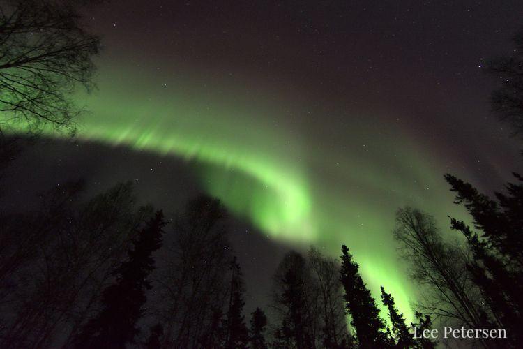 Early aurora borealis. band mov - lwpetersen | ello