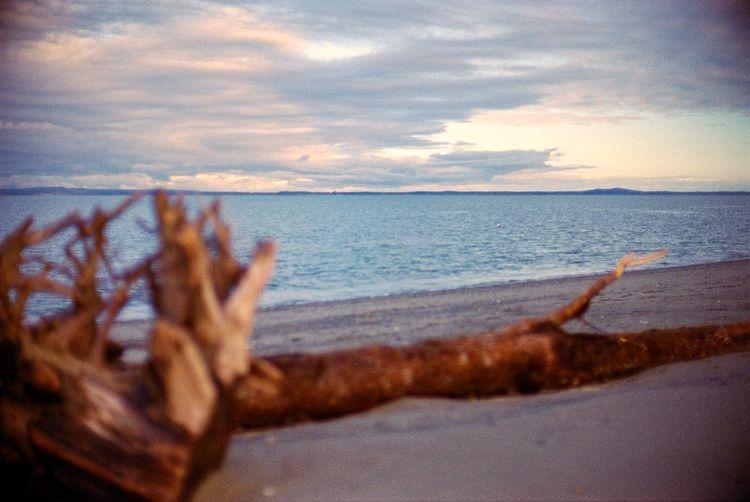 Ocean Shores, WA Kodak Portra 1 - the69thdimension   ello