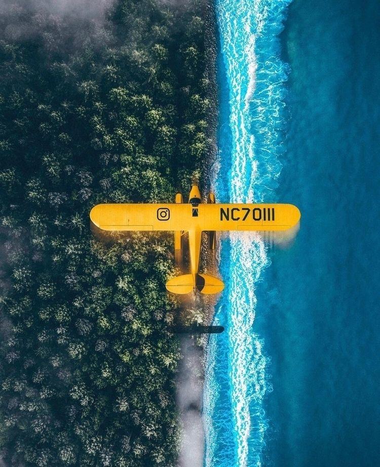 :airplane:️ Yellow mood!  - photoshop - nick_asphodel | ello