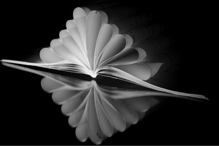 Book art - book, paper, bw - taari | ello