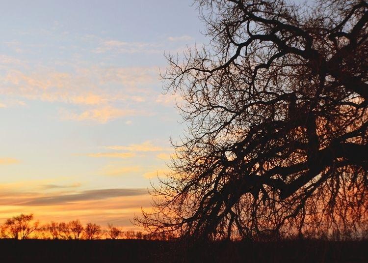 photography, landscape, sunset - demfore | ello