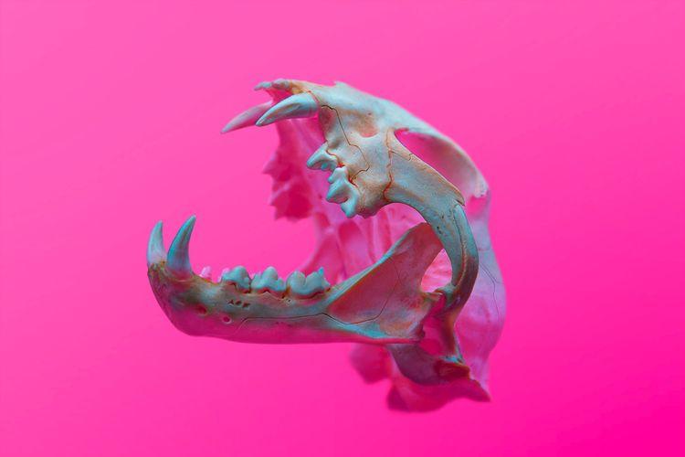ANCIENT BEAST (EXCLUSIVELY FOUN - thisset | ello