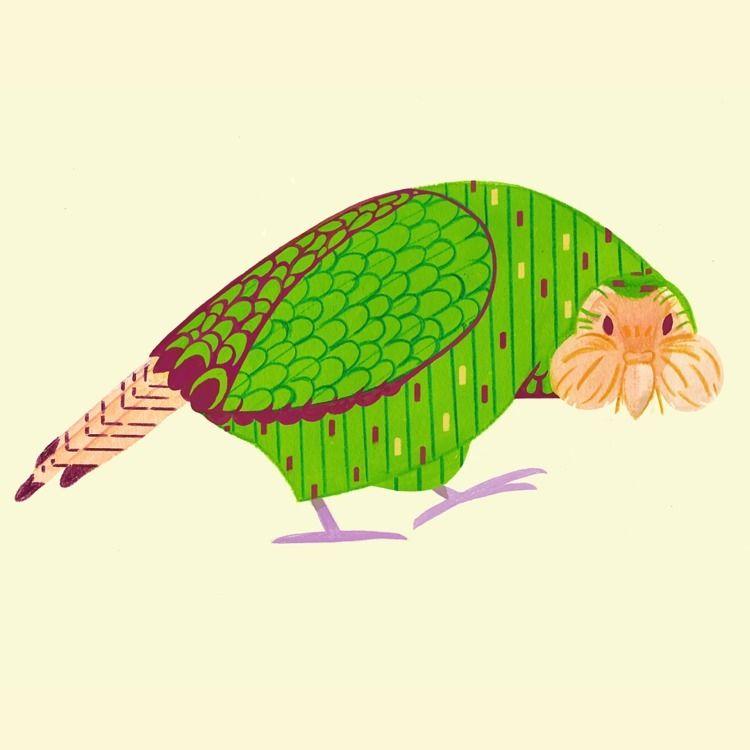 fattest parrot brink • Guardian - cesdavolio | ello