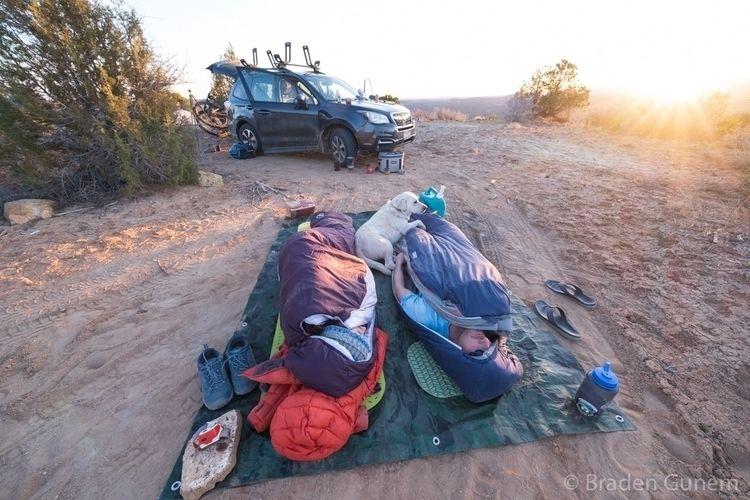 Sleeping dirt! Spring - bradengunem | ello