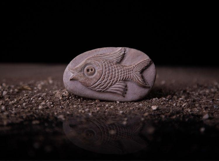 stone - photo, photography, fish - farangises | ello