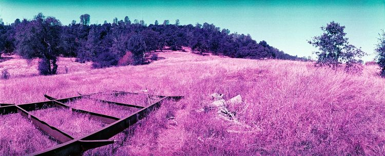 Yuba County, CA 35mm Widelux  - 35mmphotography - the69thdimension   ello