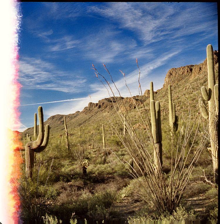 Saguaro Park, AZ Kodak Ektachro - the69thdimension   ello