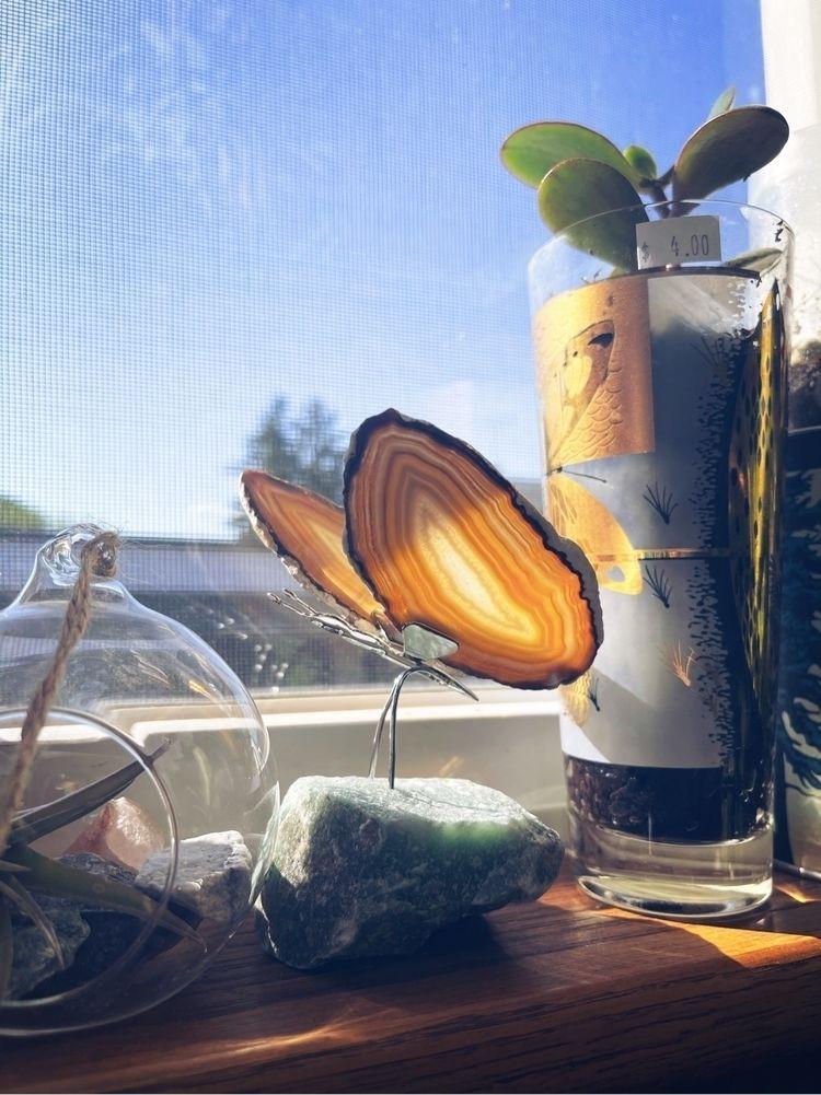Crystal butterfly 🦋 - nature, crystals - gypsyhawaii | ello