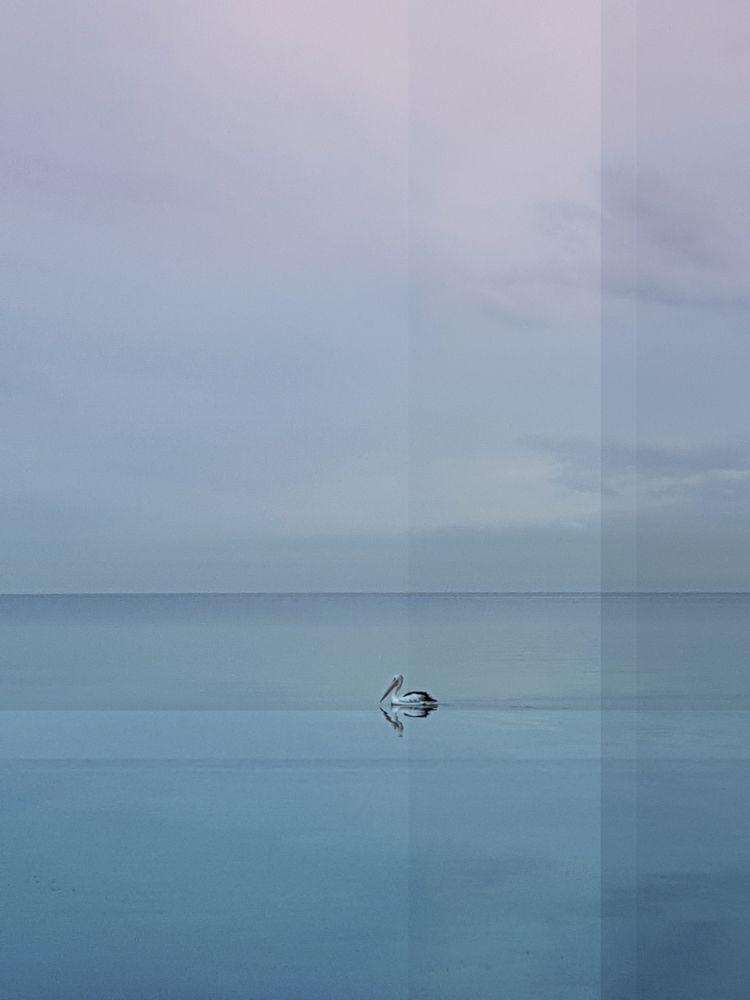 Bayside Sonnet 3 - photography, digitalart - visualalchemy   ello
