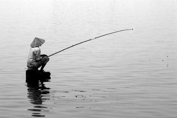 Nằm mơ thấy câu cá đánh con gì  - netmodecomvn   ello