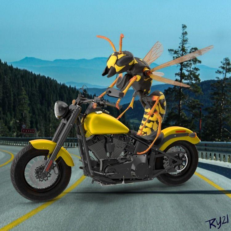 Daily Digital 151 - Wild Wasp k - retroyeti   ello