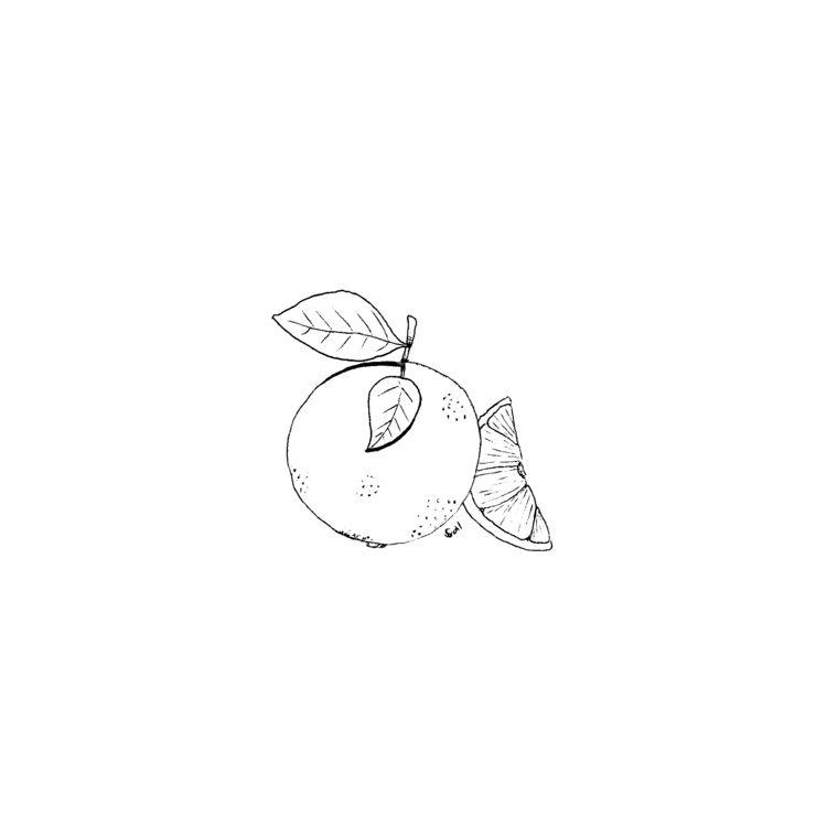 Sketch Daily - 620 Oranges - sketchdaily - svaeth | ello