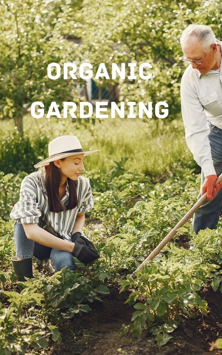 LOVE NATURE PLANT ORGANIC GARDE - harish22   ello