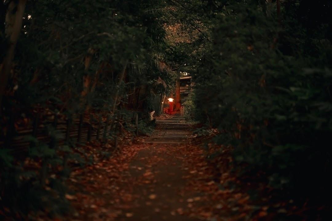 long path lanterns...  - tokyo, japan - fokality | ello