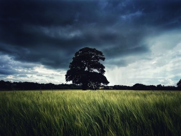 Storm Approaching - photography - davidhawkinsweeks | ello