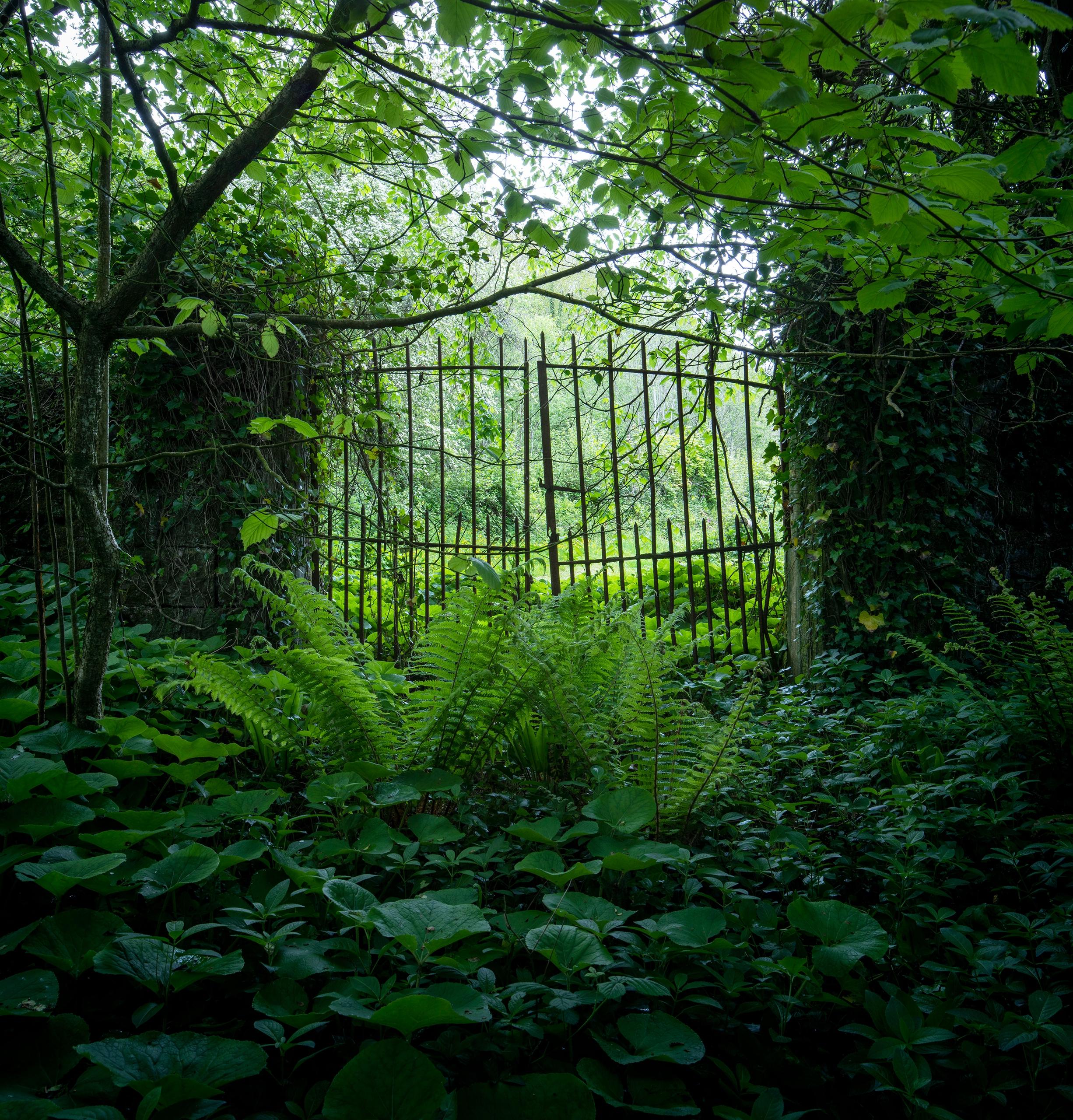 SIDE GATES ESTATE green canopy - forgottenheritage | ello