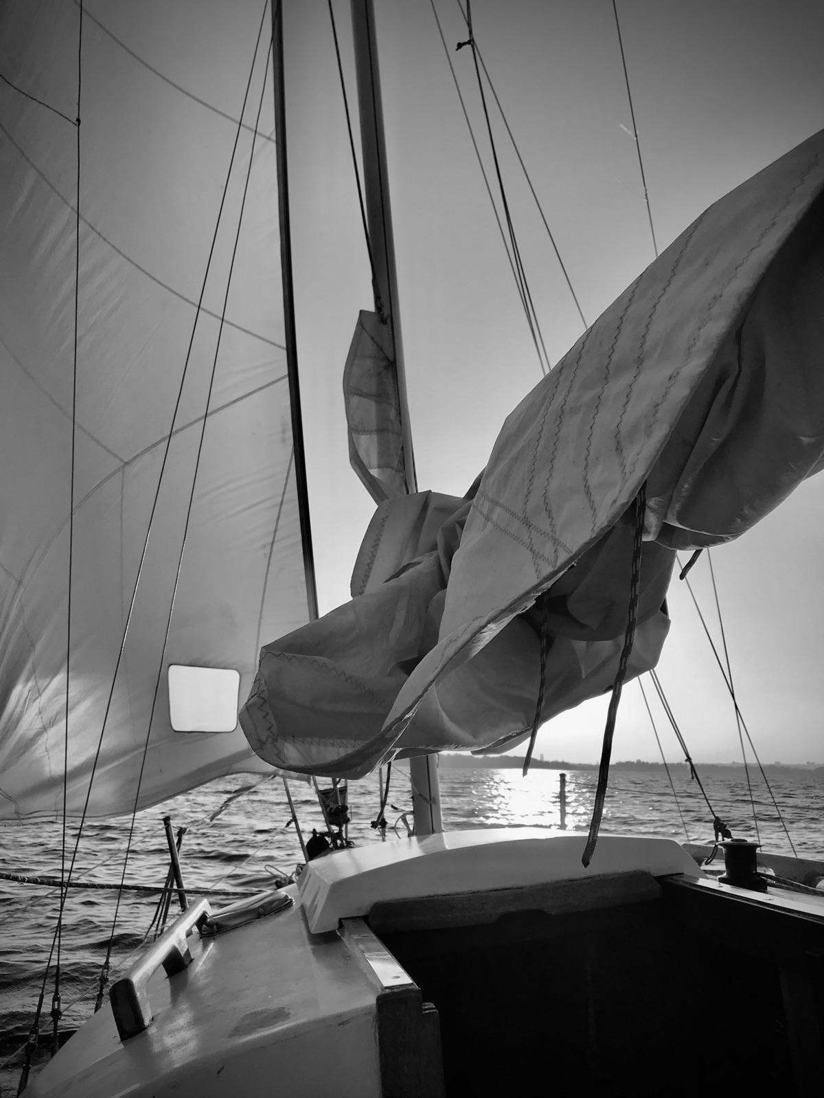 Sailing dawn // picture serene - blueskipper | ello