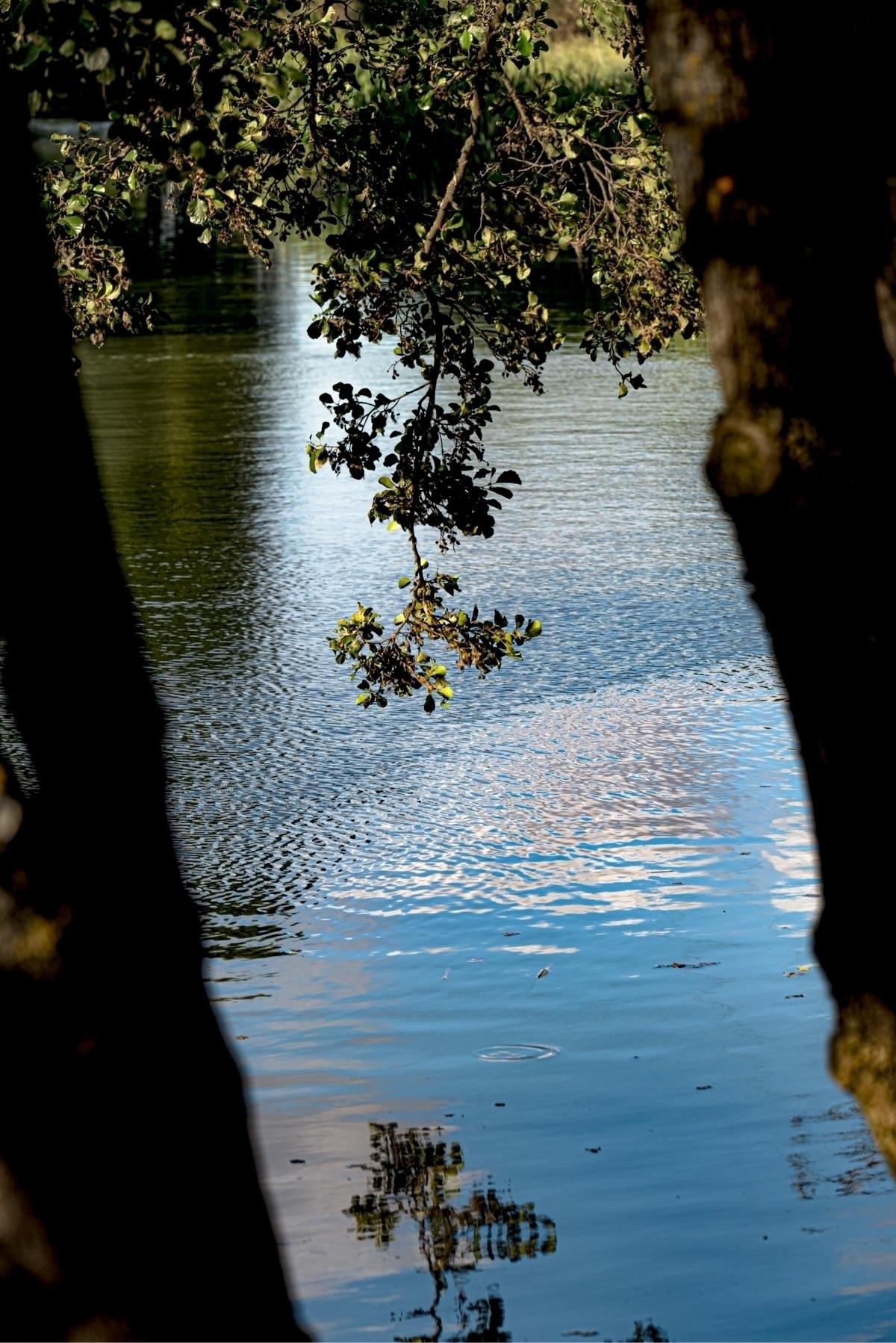 ello, nature, europe, travelphotography - photocharly046 | ello