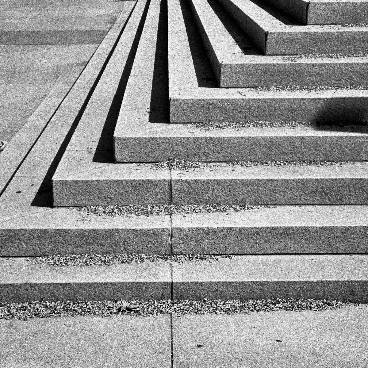 Steps… 5 400 film white - ilfordhp - kirkobeeoed | ello
