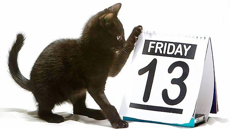 Friday 13th day duck misfortune - wmdawes | ello
