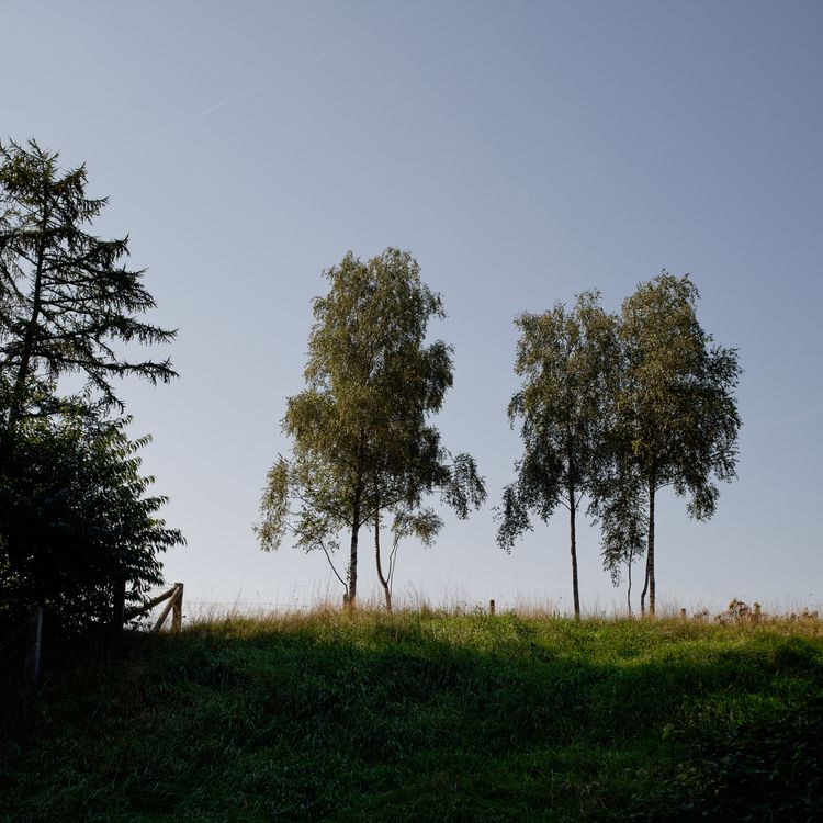 Anhöhe - photography, landscape - marcushammerschmitt | ello