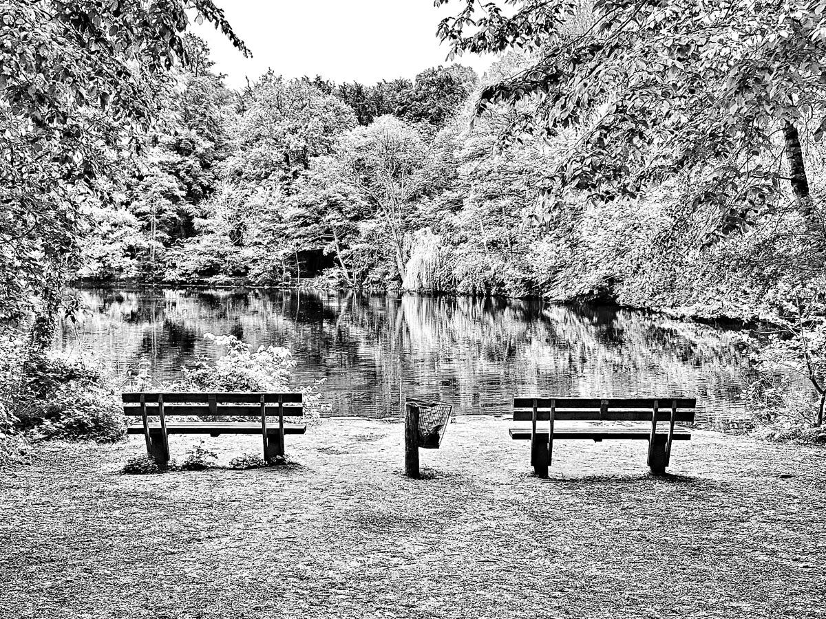 • Park benches - photography, blackandwhitephotography - borisholtz   ello