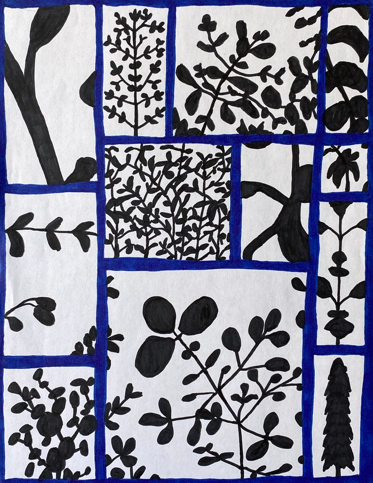 VIEWS PLANT Fibra sobre papel d - alico_rov   ello