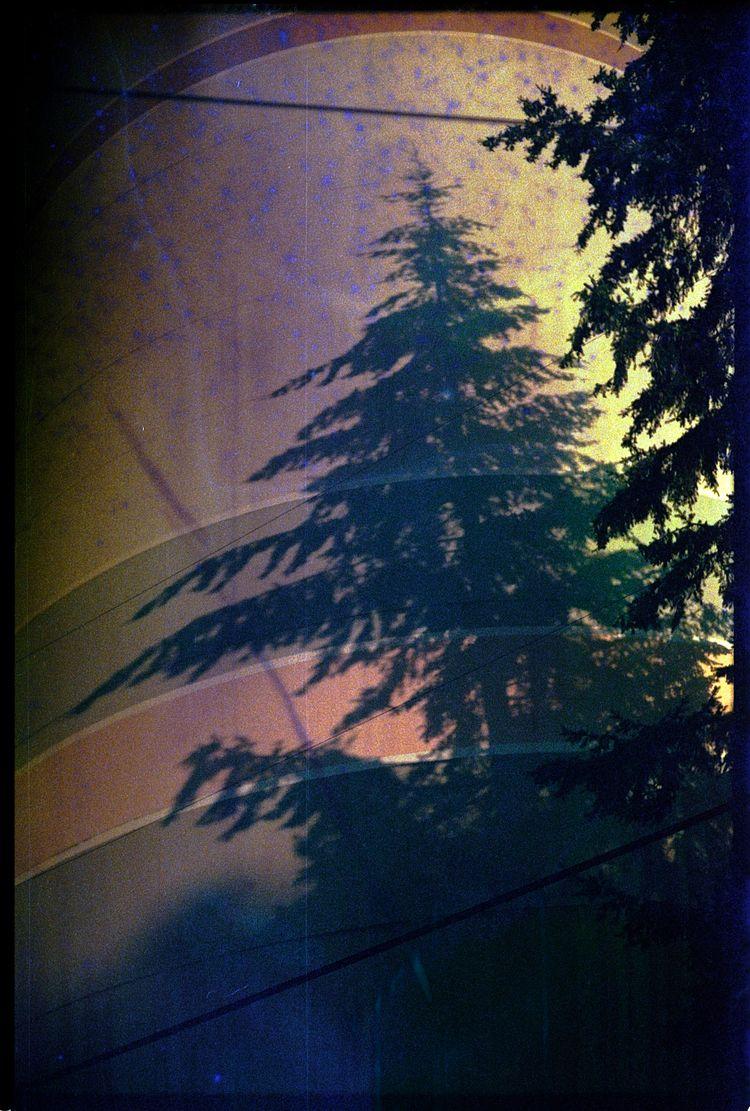 Kodak Pro Image 100 soaked red  - the69thdimension | ello